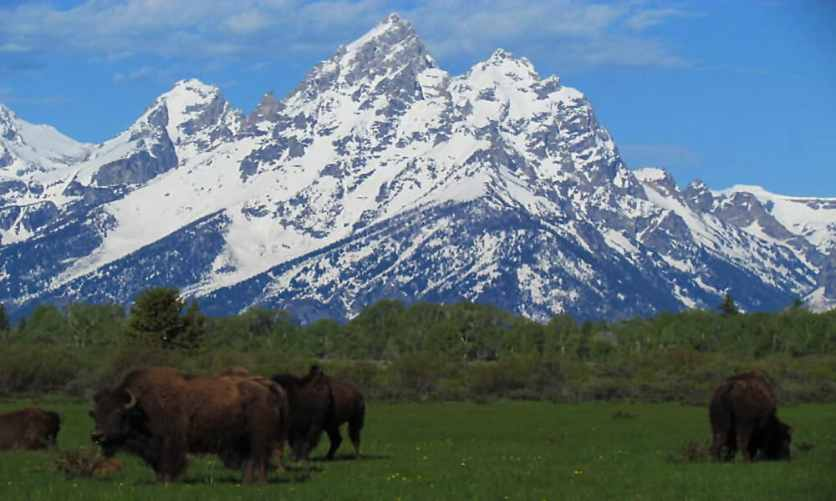 Jackson-Hole-Architecture-Western-Style-Teton-Mountains-003