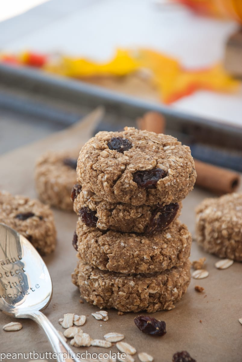 Cinnamon Raisin Oatmeal Cookies — Peanut Butter Plus Chocolate