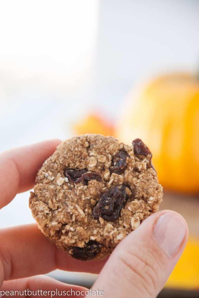 Cinnamon-Oatmeal-Cookies4