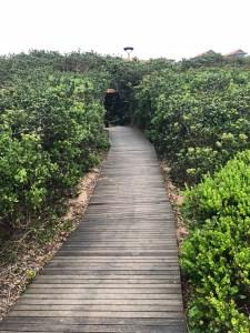 Zimbali Resort Review - Beach - PeanutGallery247