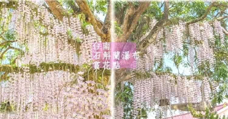 台南秘境 白河石斛蘭瀑布,小村莊裡的浪漫粉紅花海,充滿驚喜的鄉間小路