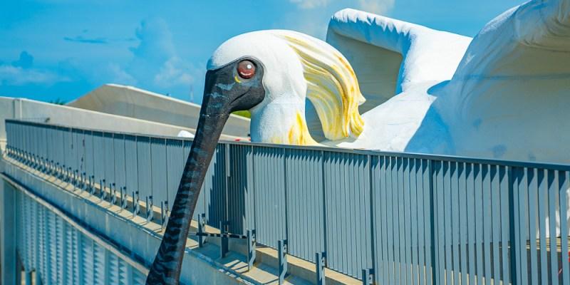 七股遊客中心怎麼玩?4公尺高「黑面琵鷺王」就在這棟建築上!七股遊客中心新亮點!巨大黑面琵鷺等你來拍