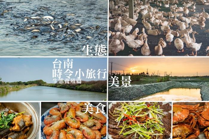 台南時令小旅行|來一趟生態養殖小旅行,欣賞生態品嚐美食,感受這片土地的多樣性與美好!亮哥生態養殖場/溪南休閒塭釣場/台南鴨莊