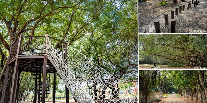 大隆田生態文化園區|台南美麗的森林秘境,穿越綠色隧道,到樹林裡挑戰刺激體能設施!