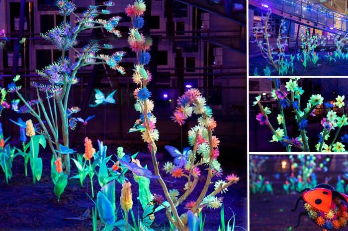 期間限定!台南夢幻的螢光小花園,到月光下的綺麗世界走走|台江埕「萌生」藝術展