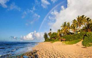 Pearl King Travel-22-nights-hawaii-and-tahitian-treasures-offer-july-18