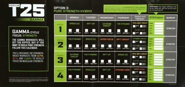 20+ T25 Gamma Hybrid Printable Calendar Pictures and Ideas