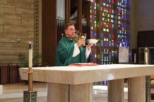 Catholic Liturgy Calendar