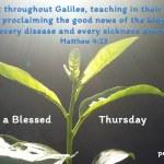 Jesus went throughout Galilee..