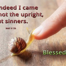 Not the upright, but sinners.. (BL)