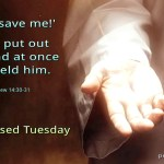 Jesus put out his hand at once and held him (BL)