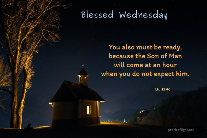 You also must be ready, because the Son of Man will come at an hour when you do not expect him.