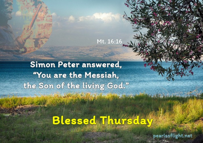 """Simon Peter answered, """"You are the Messiah, the Son of the living God."""""""