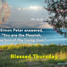 "Simon Peter answered, ""You are the Messiah, the Son of the living God."""