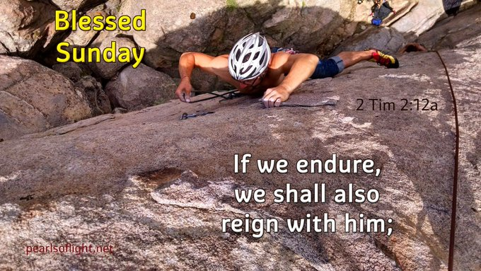 If we endure, we shall also reign with him;