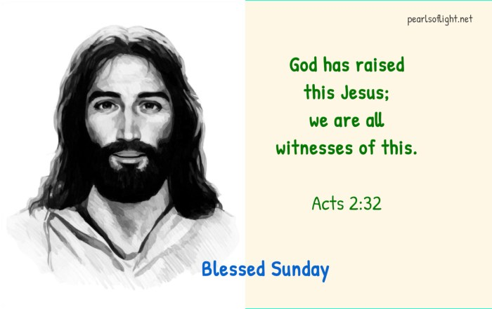 God has raised this Jesus; we are all witnesses of this.