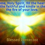 Come, Holy Spirit, fill the hearts of the faithful and kindle in them the fire of your love.