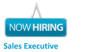 Image result for Sales Executive