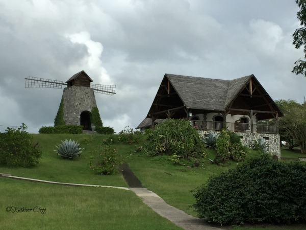 15 Things to do in Martinique that aren't Snorkeling pebblepirouette.com