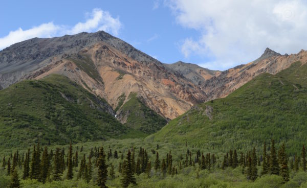 Denali Highway Alaska Road Trip