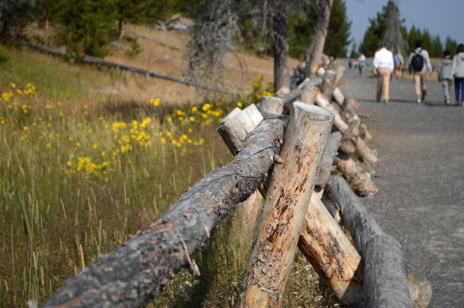 Yellowstone National Park Visitors Guide Wood Fence