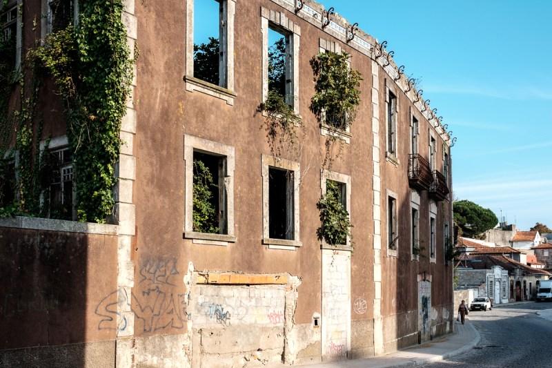 Überwachsene Ruine