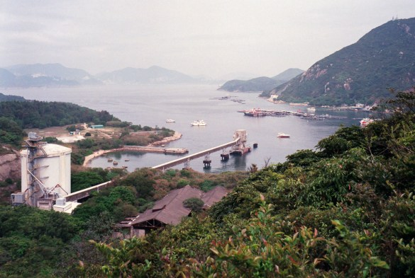 Hong Kong Analog