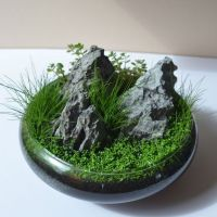 10+ Rock Display Ideas Center Pieces Explained 100
