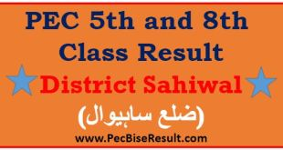 Sahiwal 5th 8th Class Result 2017