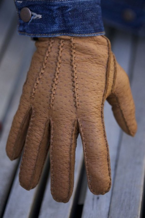 peccary-leather-gloves-male-model