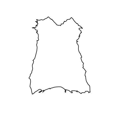 peccary silhouette 1