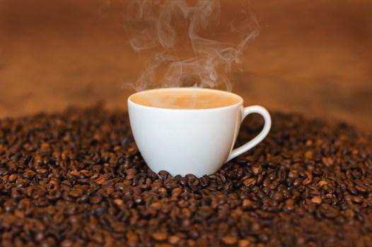 historia-cafe-grao-gourmet