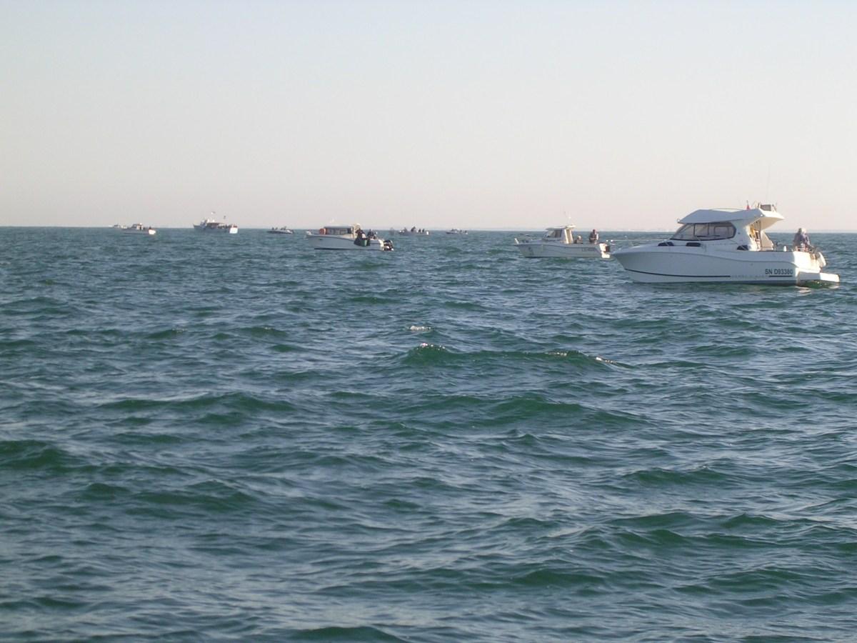 pêche de margates au large de Saint Jean de Monts