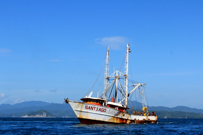 Plently of fishing vessels moving about.