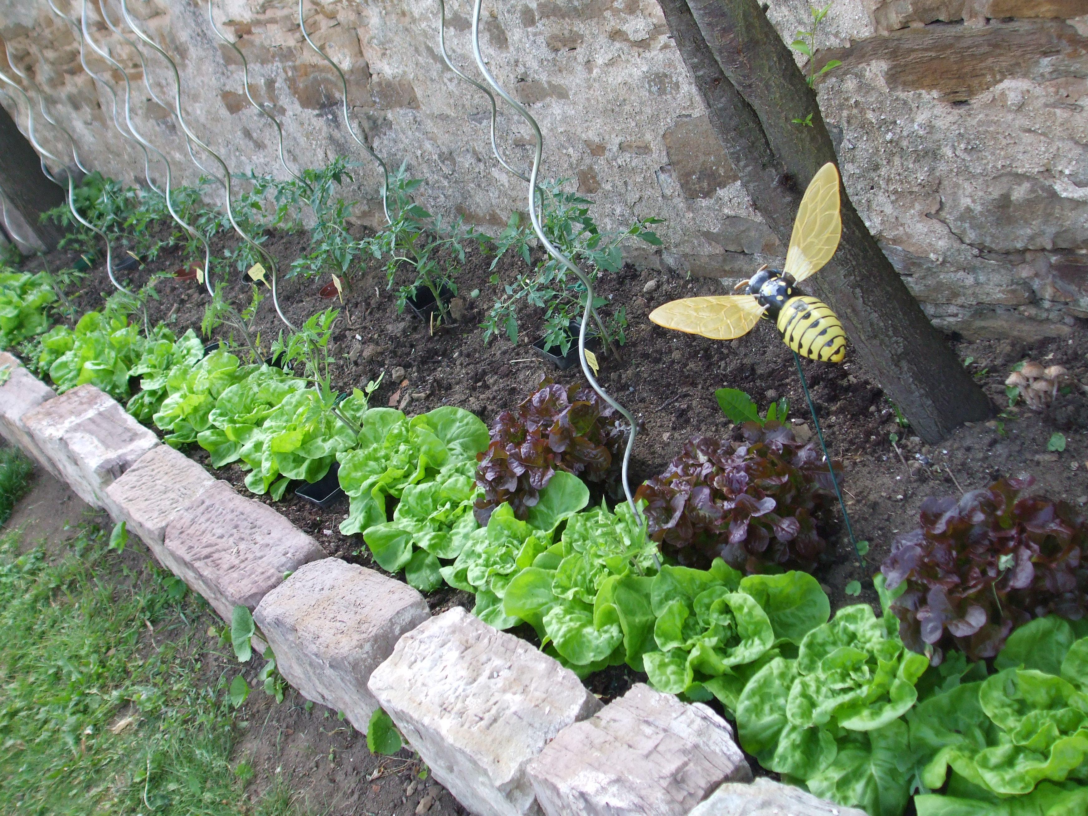 Hochbeet Garten – Träume Und Räume Seite 4