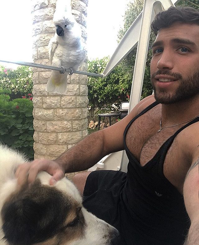 pet tease man with bird and dog hairy chest tank top