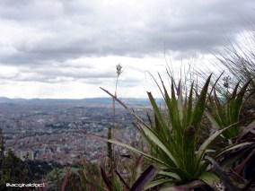 Bogotá siempre hermosa