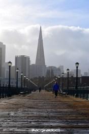 San Francisco 440
