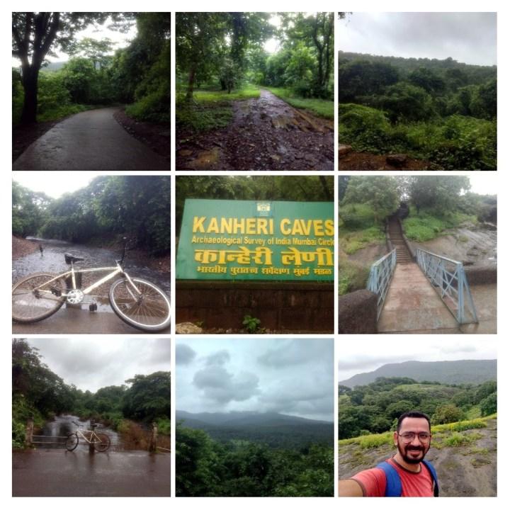 CYCLING IN BORIVALI NATIONAL PARK, TIGER SAFARI & MORE