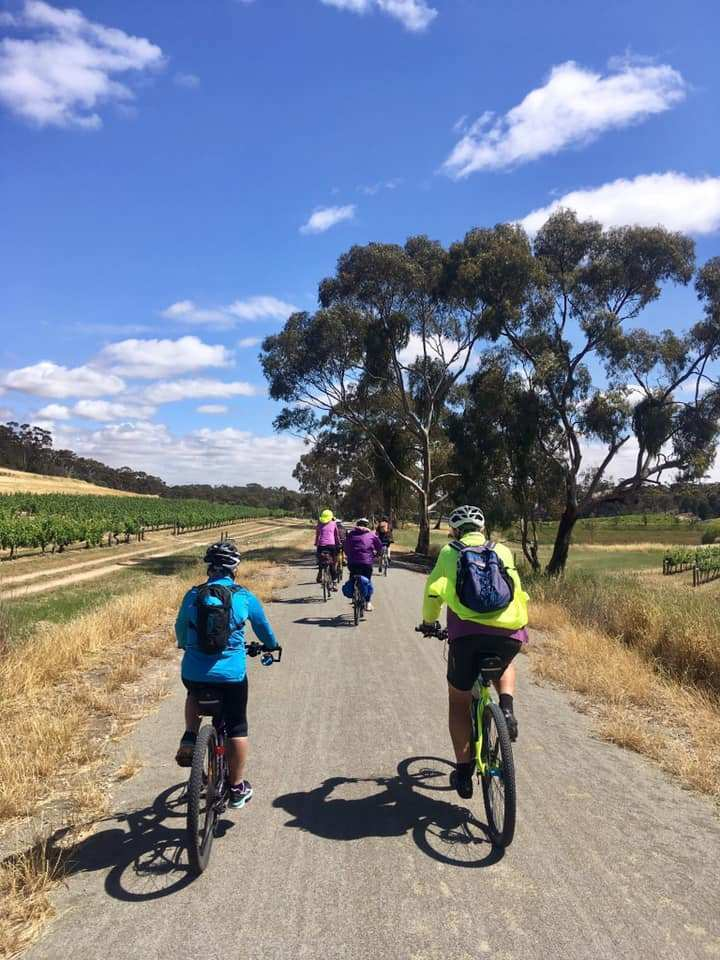 Riesling-Trail-heading-out-from-Sevenhill by Damien Henderson