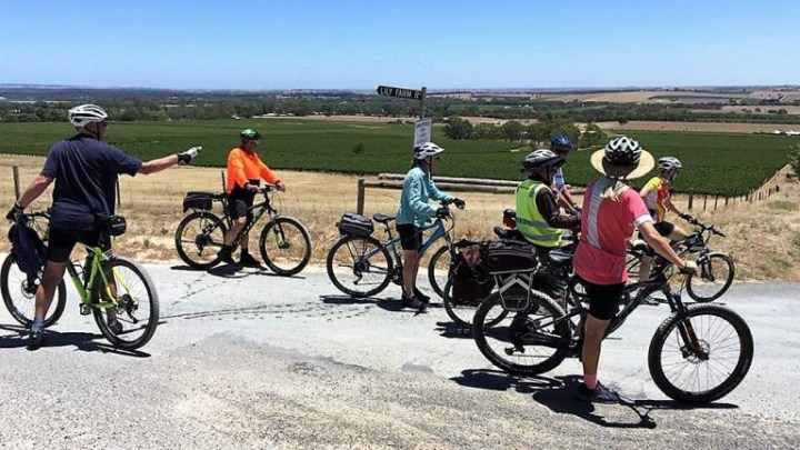 Cycling-Barossa-Backroads by Di Cuthbertson