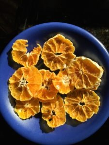 Dehydrating food for bike touring -- clementines