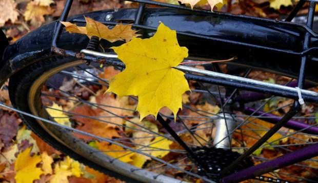 fall bike touring