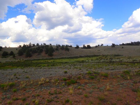 The clouds did start to break up just as we approached the paved section of the detour.
