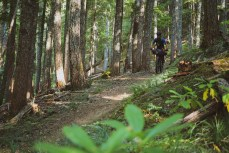Just a glimpse of the best singletrack on the OTT (in my opinion).