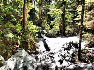 Intermittent snow became an issue around mile 18 on the trail. We had to do a lot of short hike-a-bikes before meeting up with highway 126, and then had to do a magical little highway ride/embankment jump/off-trail scramble to get to non-snowy trails and set up camp at Clear Lake.