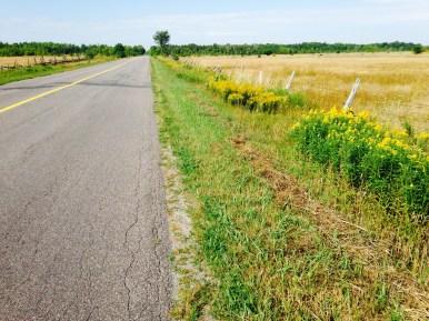 Quiet roads ...