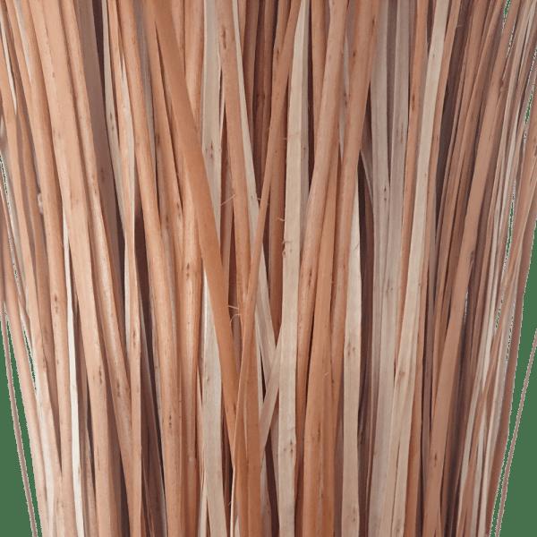 Flechtweide Weidenschiene Weide Schiene rot gekocht Nahaufnahme