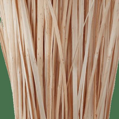 Flechtweide Weidenschiene Weide Schiene weiß geschält Nahaufnahme