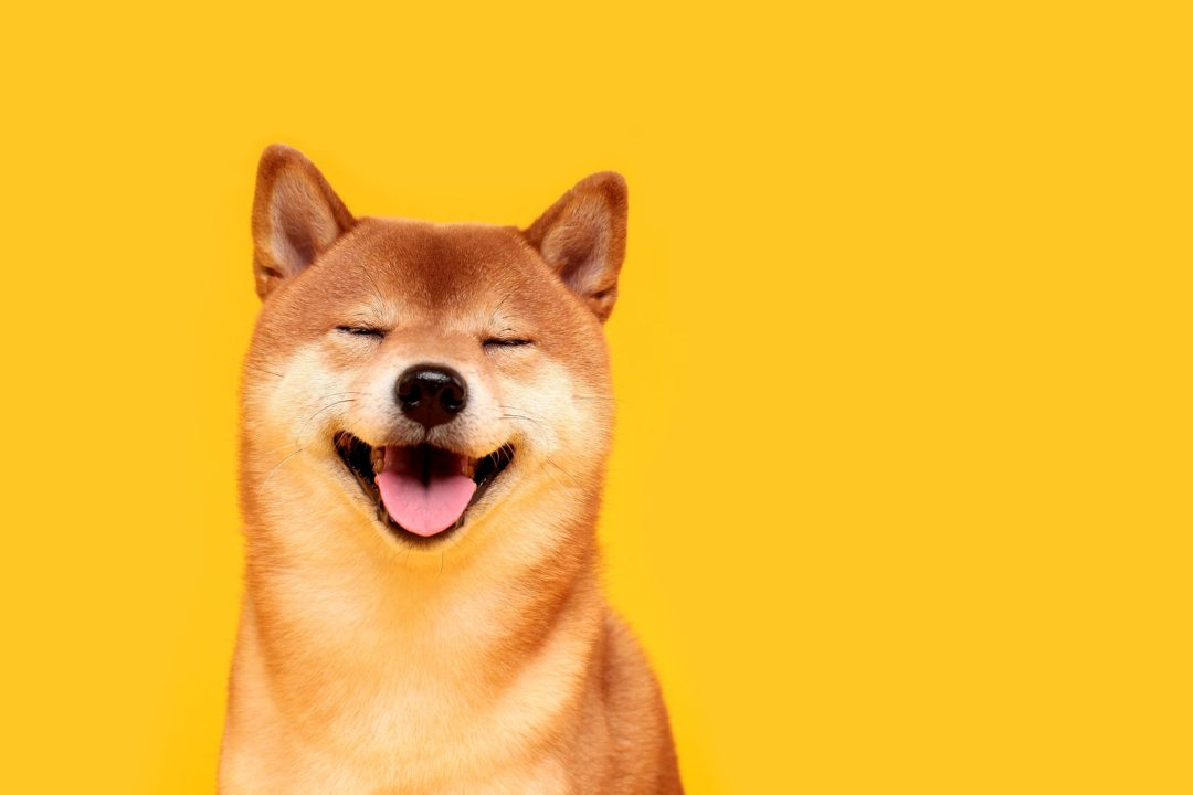 All about Dogecoin
